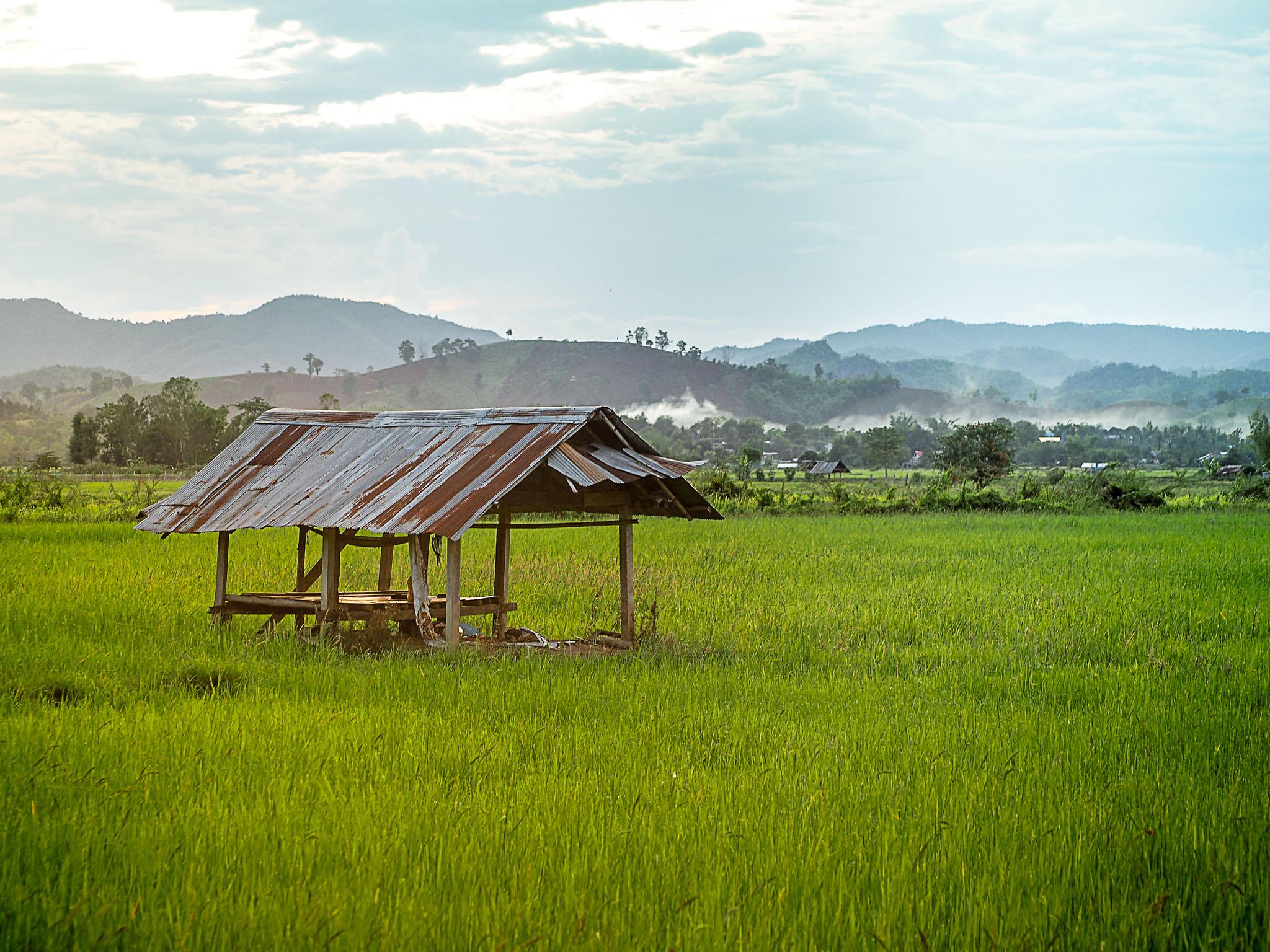Chiangrai, Thailand