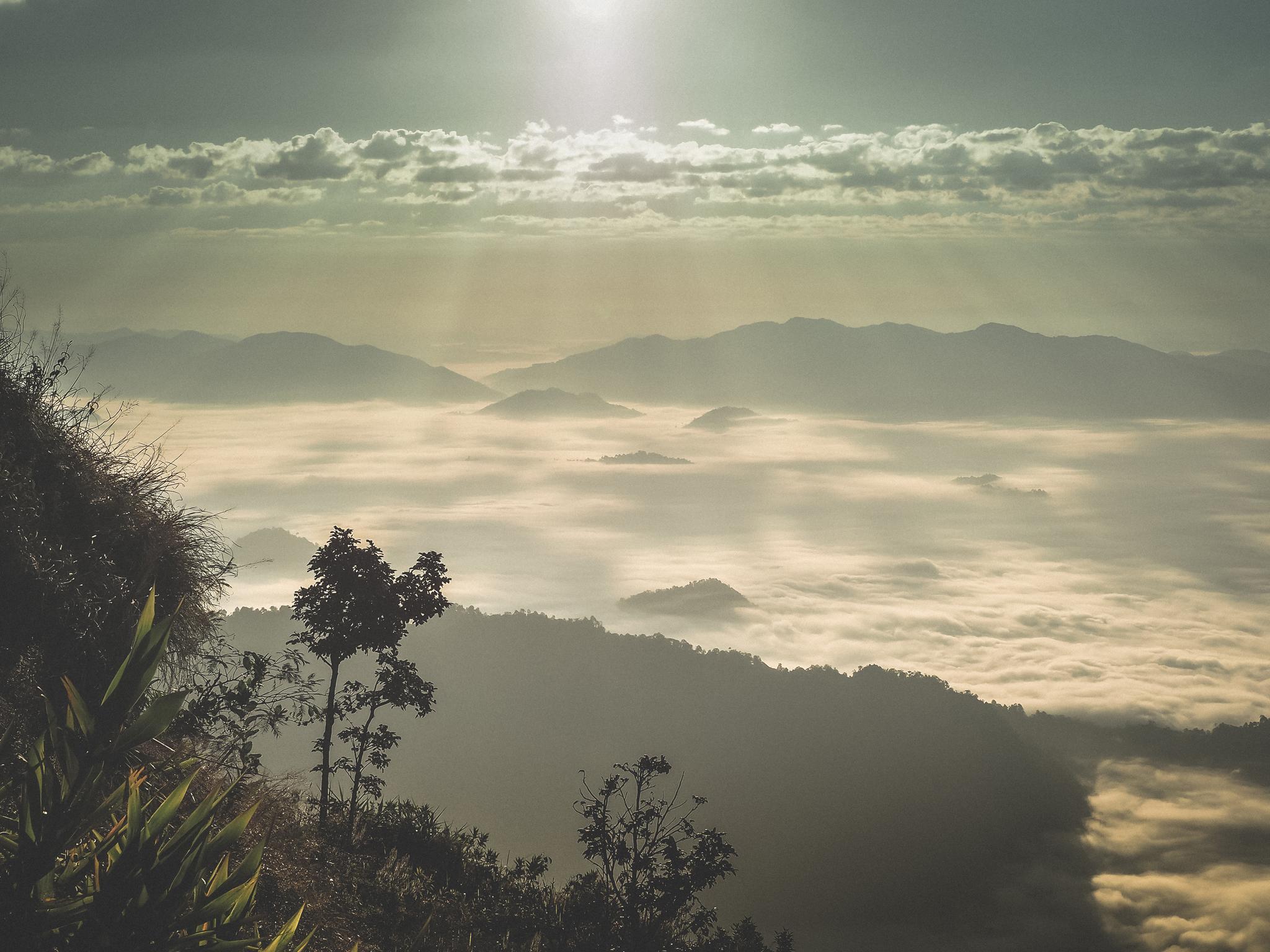 Sea of Mist, Phucheefah, Chiangrai, Thailand